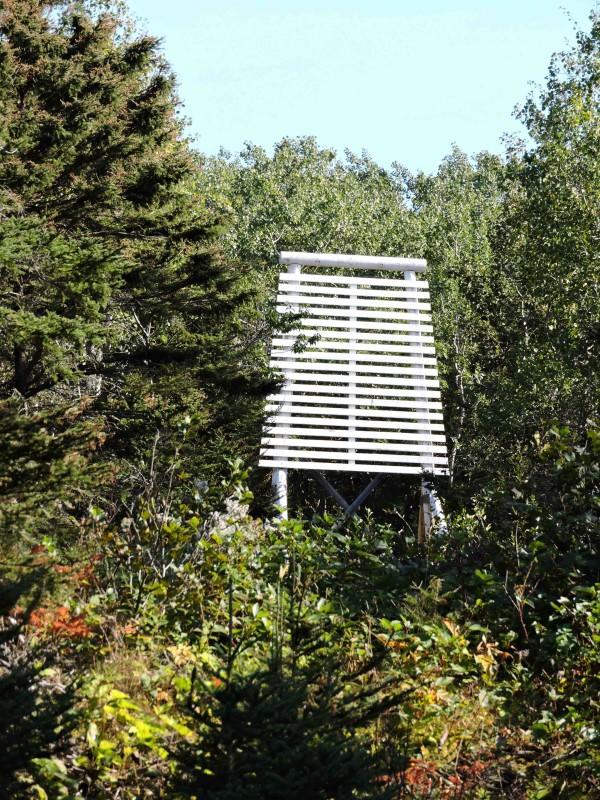 Aménagement de la forêt du Blanc
